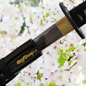 Sakura, wakizashi aiguisé (桜 fleur de cerisier)